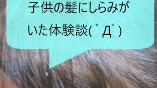 子供の髪にしらみ(アタマジラミ)がいた体験談ー症状、対処法