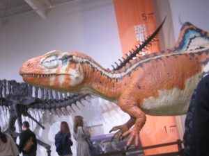 福岡市科学館 恐竜 模型