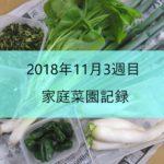 2018年11月3週目の家庭菜園記録 収穫物と作業